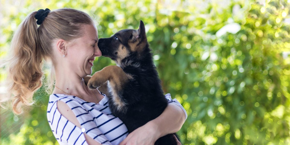 Happy girl holding a German shepherd puppy and smiling. Buying and acquiring a dog, the joy of meeting. The dog bites and kisses the owner. On a blurred green background. copy space